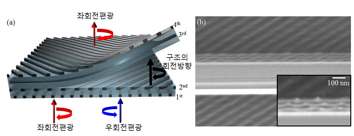 (a)촤회전편광, 구조의 회전방향, 최회전편광, 우회전편광 (b)제작된 원편광 필터 절삭 단면의 SEM이미지와확대 이미지