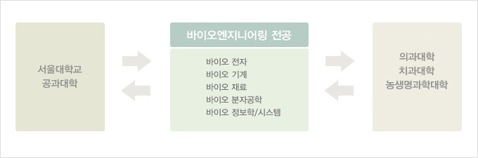서울대학교 공과대학 <-> 바이오엔지니어링 전공(바이오전자, 바이어 기계. 바이오 재료, 바이오 분자공학, 바이오 정보학/시스템) <-> 의과대학, 치과대학, 농생명과학대학